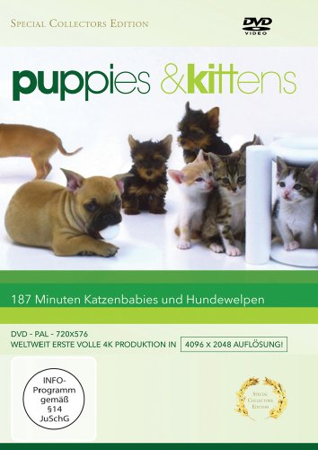 Puppies & Kittens - Hunde und Katzen [Special Collector's Edition] [Special Edition]