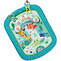 Bright Starts Tummy Mat Refresh Rattles