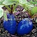 Bloom Green Co. 200 Stück Regenbogen-Kirsche-Belle, Bonsai Kirsch Rettich Bio-Gemüse, Starke Anpassungsfähigkeit, reiche Ernährung, Bonsai Anlage für Gard: 4