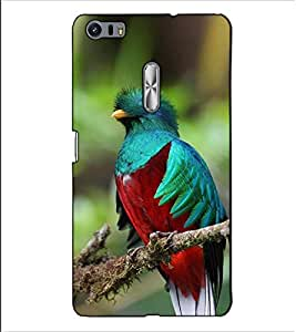 Fuson Designer Back Case Cover for Asus Zenfone 3 Ultra ZU680KL (6.8 Inch Phablet) (Awesome bird theme)
