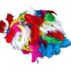 FACILLA® 120 Plumes de dinde coloris pour déco fête mariage anniversaire