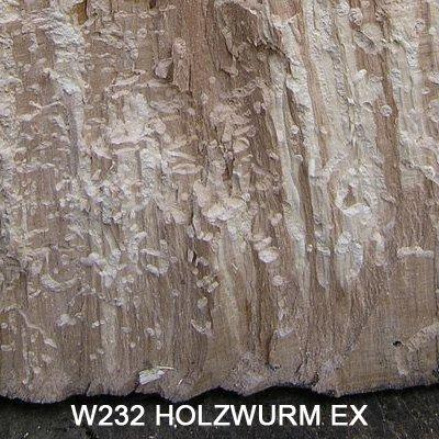 holzwurmex-holzwurmtod-holzwurm-ex-holzwurm-mort-contre-un-produit-de-preservation-du-bois-holzwurmm
