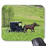 Amish Horse and Buggy Near Berlin, Ohio. Mouse Pad