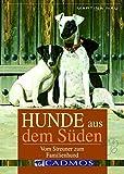 Hunde aus dem Süden: Vom Streuner zum Familienhund (Cadmos Hundebuch)