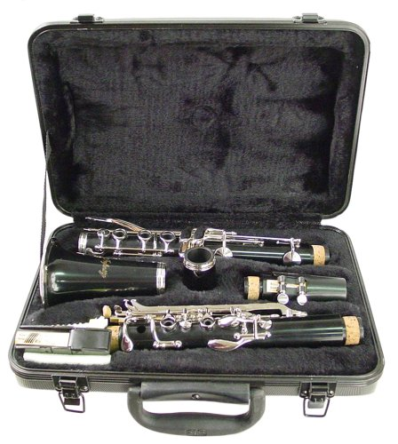 hisonic-signature-series-2610bb-orquesta-clarinete-con-funda