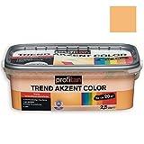 ROLLER profitan Wandfarbe Trend Akzent Color - Sonnenuntergang Matt - 2,5 Liter