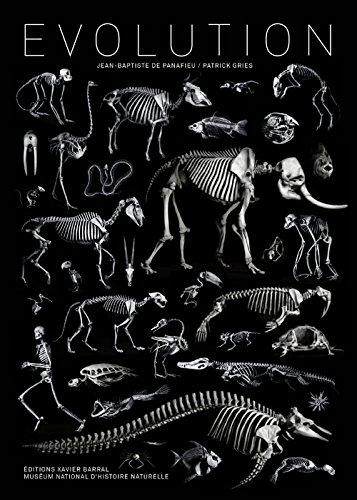 Evolution par Jean-baptiste de Panafieu