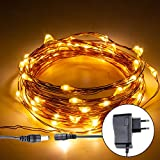 Mylife LED Waterproof Copper Wire String Light 5M 50LEDs Direct Plug for Diwali Christmas Tree Wedding Party Decoration(Warm White)