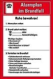 LEMAX® Aushang Alarmplan im Brandfall, Kunststoff, 200x300mm