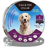 YCGJ Collares contra pulgas y garrapatas para Perros, Gatos - Protección de 8 Meses -