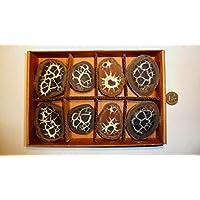 Septarie, Geode, Septarien-Paare, Sammlung 12 Stück, ca. 530g, mit wunderschönen Strukturen. preisvergleich bei billige-tabletten.eu