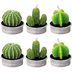 6 Piezas Velas en Forma de Planta, Hechas a Mano Delicadas Plantas Decorativas Cactus Tealight Sin Humo para Cumpleaños Fiesta de Boda Decoración (Estilo múltiple)