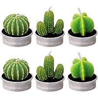 Gosear 6 Piezas Velas en Forma de Planta, Hechas a Mano Delicadas Plantas Decorativas Cactus Tealight Sin Humo para Cumpleaños Fiesta de Boda Decoración (Estilo múltiple)