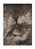 Wilton-Teppich - Ibiza Tree (grau) Größe Rund 240 cm