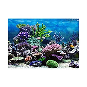 Hffheer Transparent Fish Tank Coral Rack Stand Aquarium Coral Frag Rack Acrylic Coral Bracket Base with Suckers