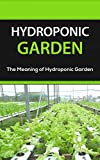 Hydroponic Garden: The Meaning of Hydroponic Garden