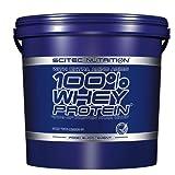 Scitec Nutrition 100 % Whey Protein Schokolade 5000 g
