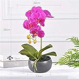 LHY DECORATION Künstliche Orchidee Blume, Faux Flora Phalaenopsis Arrangement mit Keramiktopf Home Decor,Lila