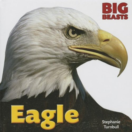 Eagle (Big Beasts) (Eagle Big)