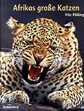 Afrikas grosse Katzen: Gepard, Löwe, Leopard -