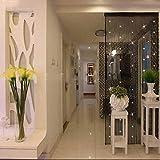 Mitsutomi Vorhang Blickdicht Verdunklungsgardine Gardinen - Wohnzimmer Dekorative Fadenvorhang mit Perlen Tür Fenster Panel Raumteiler-Schienen Gardinen-37'inch