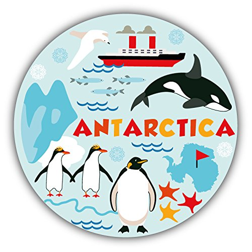 antarctica-animal-life-decor-autocollant-de-voiture-vinyle-12-x-12-cm