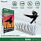 Aspectek Sistema Anti pájaros de Acero Inoxidable - 10 hileras de Púas antipalomas...