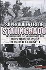 Supervivientes de Stalingrado: Testimonios de vetaranos del Sexto Ejército, 1942-43 par Busch
