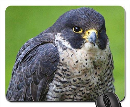 falcon-mouse-pad-mousepad-birds-mouse-pad