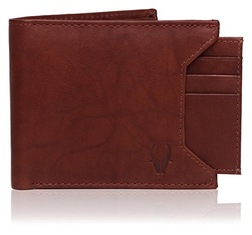 WildHorn Brown Men's Wallet