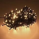Smartfox 300 LED 30m warmweiß Lichterkette Weihnachtsbeleuchtung Weihnachtsdekoration Dekobeleuchtung Weihnachtsbaumbeleuchtung für Innen Außen in Kabelfarbe: Dunkelgrün