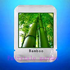 Pinkdose® Bamboo Seeds, 20Pcs/Bag Giant Moso Bamboo Seeds, Bamboo Tree, Professional Pack Seeds, Nature Outdoor Plants For Home Garden