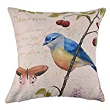 Best Prints Prints Prints Bird Houses - ELECTROPRIME Cotton Linen Bird Print Household Square Pillowcase Review