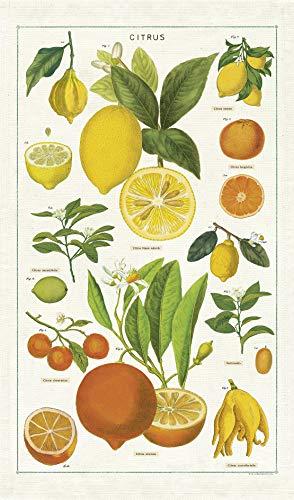 Cavallini Papers & Co. Geschirrtuch, Vintage Tea Towels, Citrus, Zitrusfrüchte Vintage Tea Towel