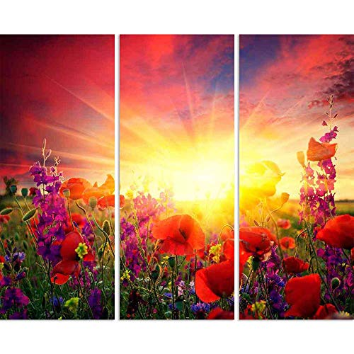 ArtzFolio Summer Landscape with A Field of Red Poppies Split Art Painting Panel On Sunboard 21.8 X 18Inch -