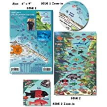 Avalon Underwater Park Fish ID for Scuba Divers and Snorkelers