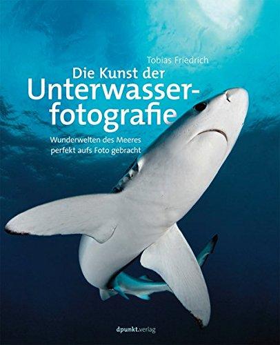 Die Kunst der Unterwasserfotografie: Wunderwelten des Meeres perfekt aufs Foto gebracht