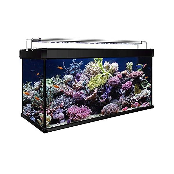 ICA KXM200N Kit Aqua Lux Pro 200 with Internal Filter, Black