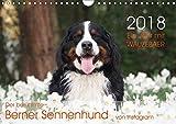 Ein Jahr mit WAUZEBAER - Der berühmte Berner Sennenhund von Instagram (Wandkalender 2018 DIN A4 quer): Fotokalender eines Berner Sennenhundes [Kalender] [Apr 27, 2017] Brenner, Sonja