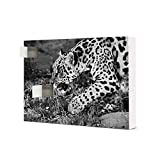 artboxONE Adventskalender zum Selbstbefüllen Jaguar beim Jagen Adventskalender Natur