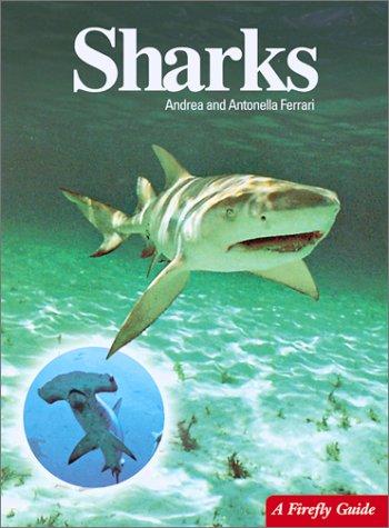 Sharks (Firefly Guide)