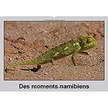 Des moments namibiens / FR-Version (Calendrier mural 2015 DIN A2 horizontal) (Calvendo Nature)