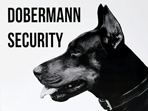 Türschild Dobermann Security Hundeschild