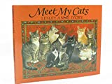 Cover of: Meet My Cats | Lesley Anne Ivory