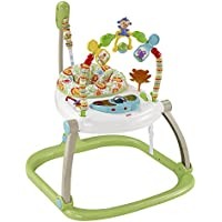 Fisher-Price CHN38 Rainforest Spacesaver Jumperoo, Portable Baby Chair and Bouncer with Rattle, Teething Toy, Music, Lights and Sounds