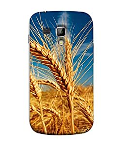 PrintVisa Designer Back Case Cover for Samsung Galaxy S Duos 2 S7582 :: Samsung Galaxy Trend Plus S7580 (The Wheat Crop In The Fields Design)