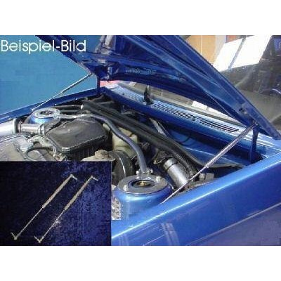 WES.Tuning 00029 Motorhaubenlifter