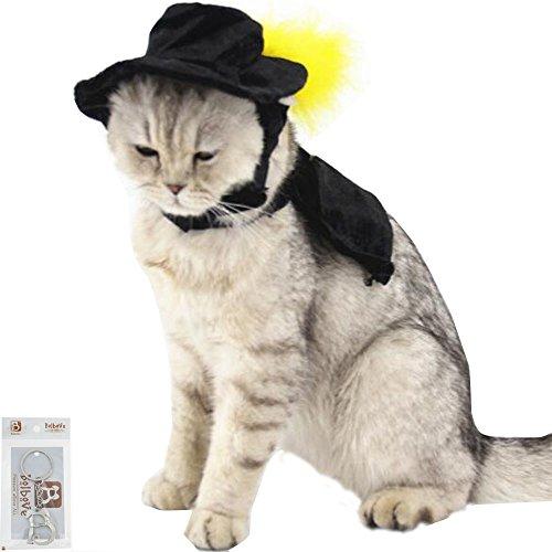Bolbove Pet Formale gefiederten Hat mit Charming Poncho-Set für Katzen & Kleine Hunde Party Halloween-Kostüm Schwarz (Schwarz Halloween-kostüme Die Besten)