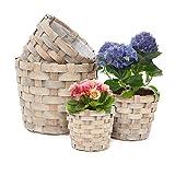 Relaxdays Pflanzkörbe rund hoch 4er Set dekorativer Holzkorb zum Bepflanzen