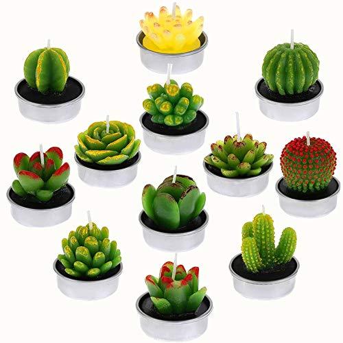 W-family Kaktus-Kerzen, handgefertigt, zarte Sukkulenten-Teelichter für Spa, Zuhause, Party, Hochzeit, Weihnachten, Neujahr, Dekoration, Geschenke, 12 Stück